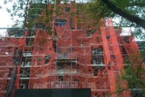 Netted Scaffold